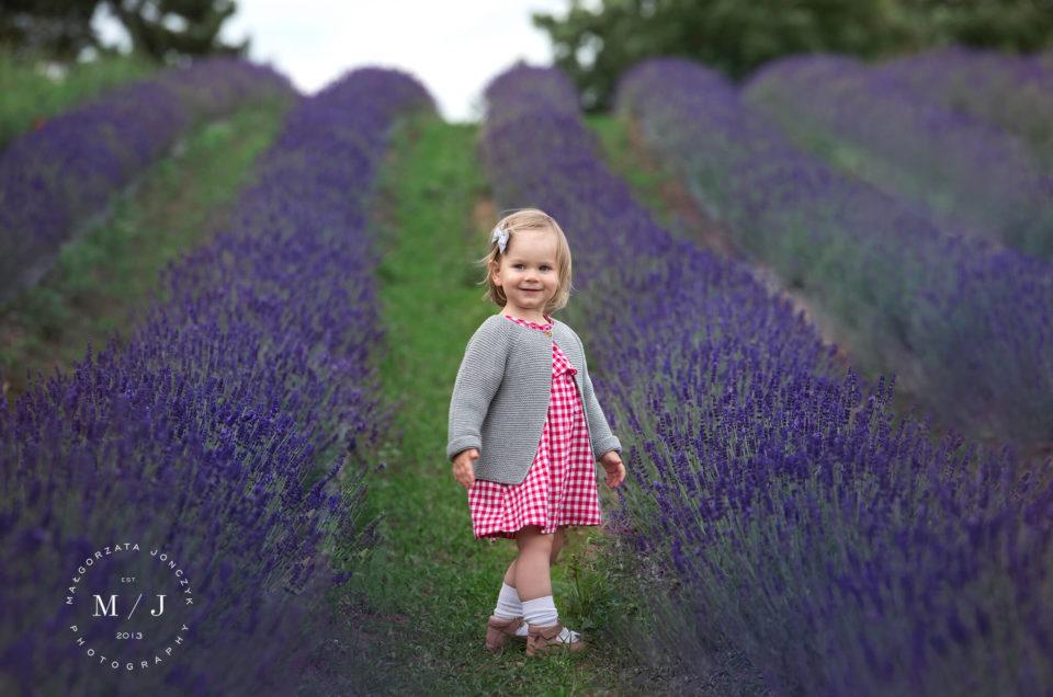 Sesja lawendowa, czyli piękne spotkanie fotografii i natury w najlepszym wydaniu 12